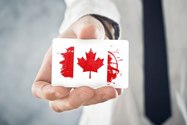 生育旅游或终止?加拿大保守党吁停止自动入籍制度