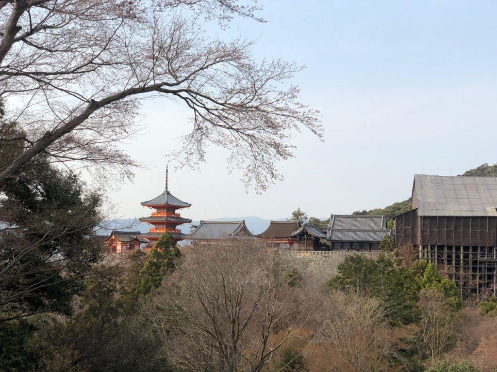 日本东京、京都10天佛系游